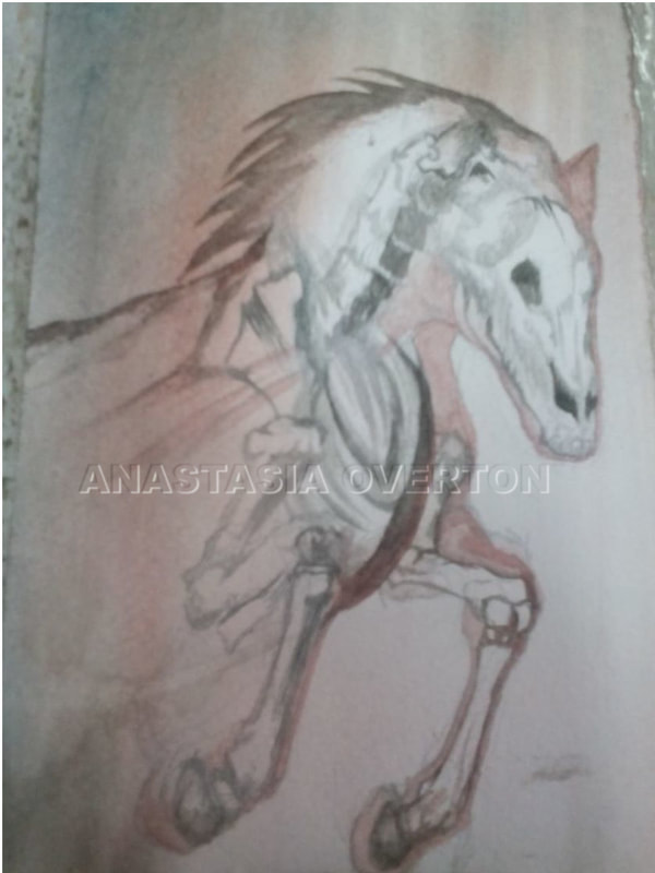 """Pale Horse"" watercolor by Anastasia Overton"